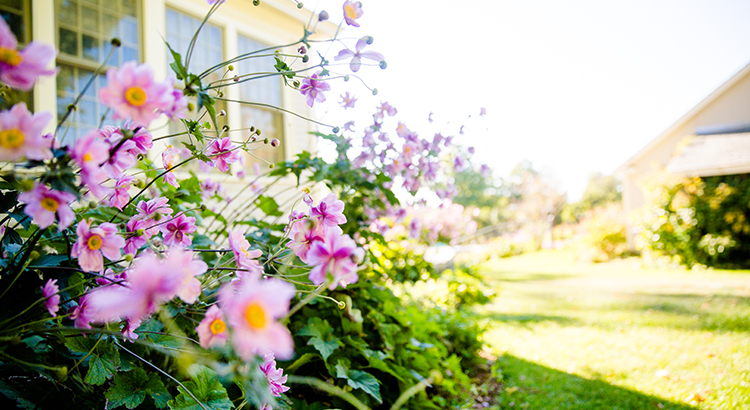 Will the Housing Market Bloom This Spring? | MyKCM